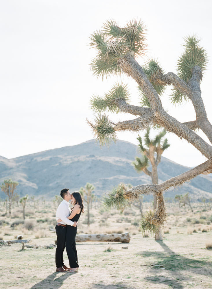 LOS ANGELES JOSHUA TREE ENGAGEMENT SESSION PHOTOGRAPHY-0013